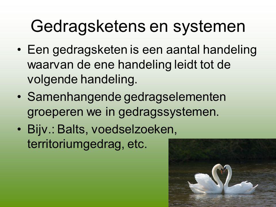 Gedragsketens en systemen •Een gedragsketen is een aantal handeling waarvan de ene handeling leidt tot de volgende handeling.