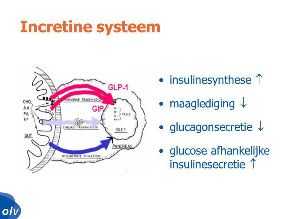 o l vo l vo l vo l v Incretine systeem •insulinesynthese  •maaglediging  •glucagonsecretie  •glucose afhankelijke insulinesecretie 