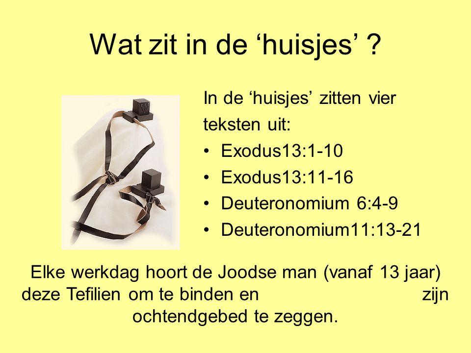 Wat zit in de 'huisjes' ? In de 'huisjes' zitten vier teksten uit: •Exodus13:1-10 •Exodus13:11-16 •Deuteronomium 6:4-9 •Deuteronomium11:13-21 Elke wer