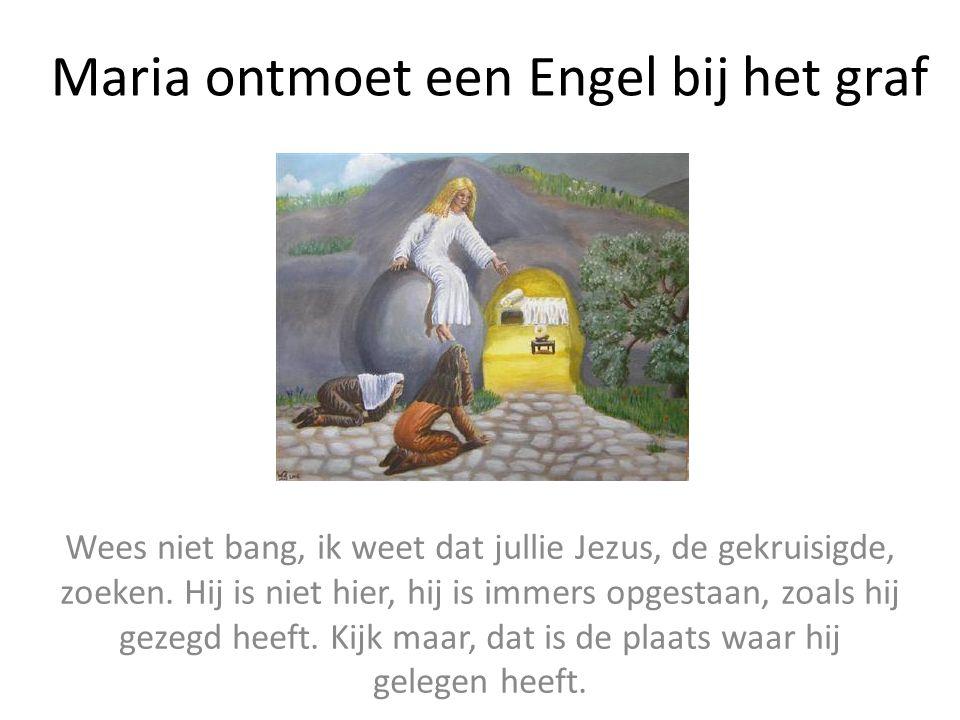 Maria ontmoet een Engel bij het graf Wees niet bang, ik weet dat jullie Jezus, de gekruisigde, zoeken. Hij is niet hier, hij is immers opgestaan, zoal