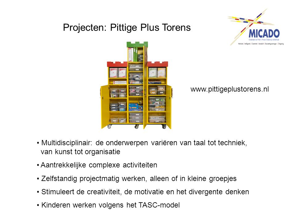 Projecten: Pittige Plus Torens www.pittigeplustorens.nl • Multidisciplinair: de onderwerpen variëren van taal tot techniek, van kunst tot organisatie