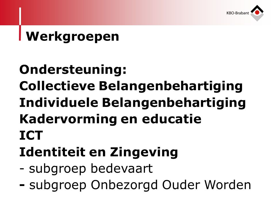Ondersteuning: Collectieve Belangenbehartiging Individuele Belangenbehartiging Kadervorming en educatie ICT Identiteit en Zingeving - subgroep bedevaa