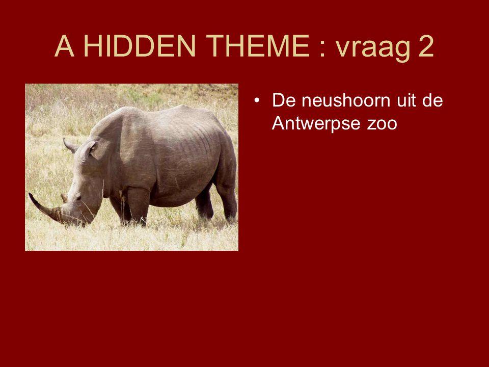 A HIDDEN THEME : vraag 2 •De neushoorn uit de Antwerpse zoo