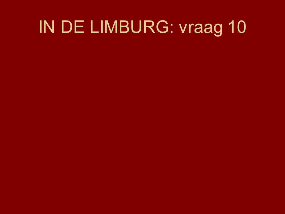 IN DE LIMBURG: vraag 10