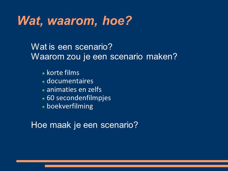 Websites: http://homepages.ulb.ac.be/~rgeerts/scenarioschrijven/inleiding.htm l http://schrijven.verzamelgids.nl/ http://www.netwerkscenario.nl/ http://www.filmmaken.nl/boek.phtml http://www.filmmaken.nl/links.phtml http://kill-your-darlings.nl/ Literatuur en websites