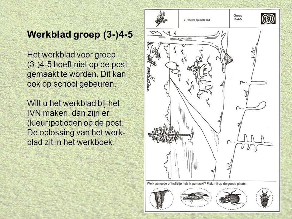 Werkblad groep (3-)4-5 Het werkblad voor groep (3-)4-5 hoeft niet op de post gemaakt te worden. Dit kan ook op school gebeuren. Wilt u het werkblad bi