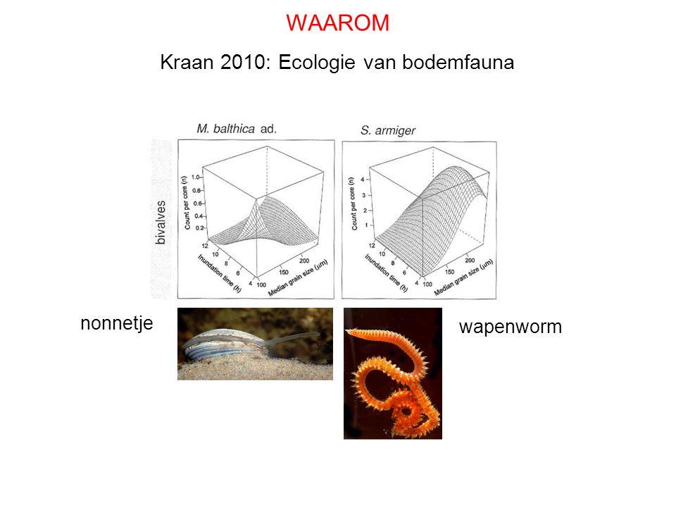 wapenworm nonnetje Kraan 2010: Ecologie van bodemfauna WAAROM