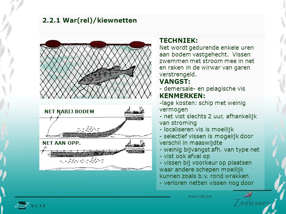 V L I Z www.vliz.be Zeelessen BORDEN 2.2.1 War(rel)/kiewnetten TECHNIEK: Net wordt gedurende enkele uren aan bodem vastgehecht. Vissen zwemmen met str