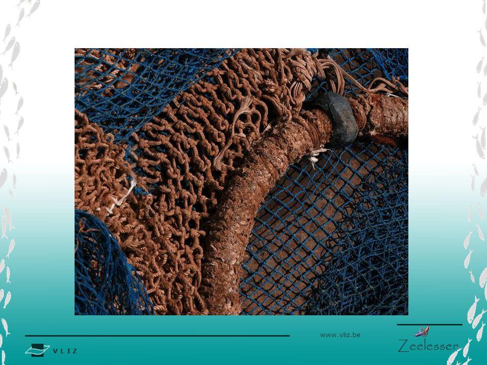 V L I Z www.vliz.be Zeelessen Inleiding Wanneer men in de media over de destructieve gevolgen van 'de visserij' spreekt, maakt men dikwijls de fout elke techniek over de zelfde kam te scheren.