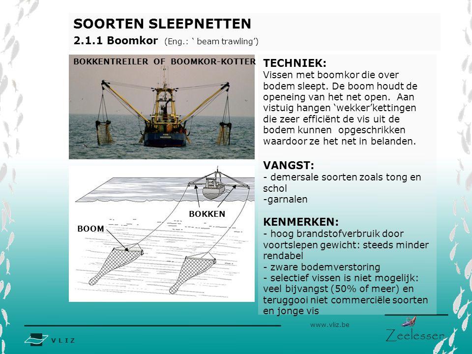 V L I Z www.vliz.be Zeelessen SOORTEN SLEEPNETTEN 2.1.1 Boomkor (Eng.: ' beam trawling') TECHNIEK: Vissen met boomkor die over bodem sleept. De boom h