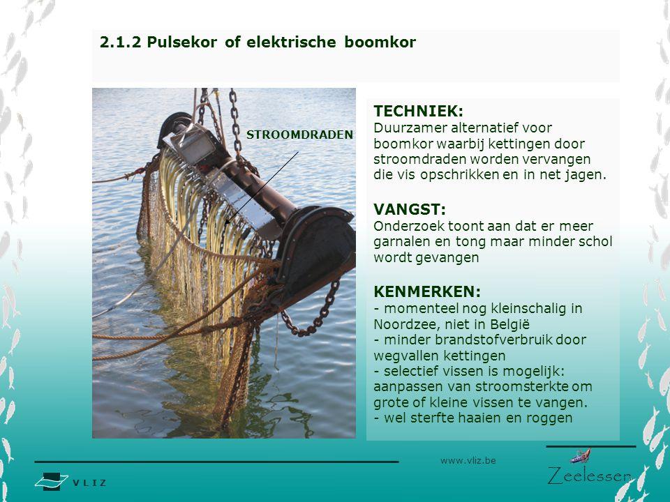 V L I Z www.vliz.be Zeelessen TECHNIEK: Duurzamer alternatief voor boomkor waarbij kettingen door stroomdraden worden vervangen die vis opschrikken en