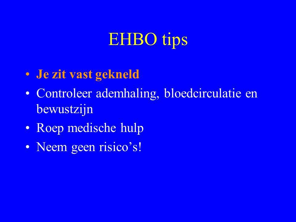 EHBO tips •Bloedneus: •Hoofd voorover buigen •Knijp 10 minuten de neus dicht •Raadpleeg een arts wanneer het bloeden aanhoudt