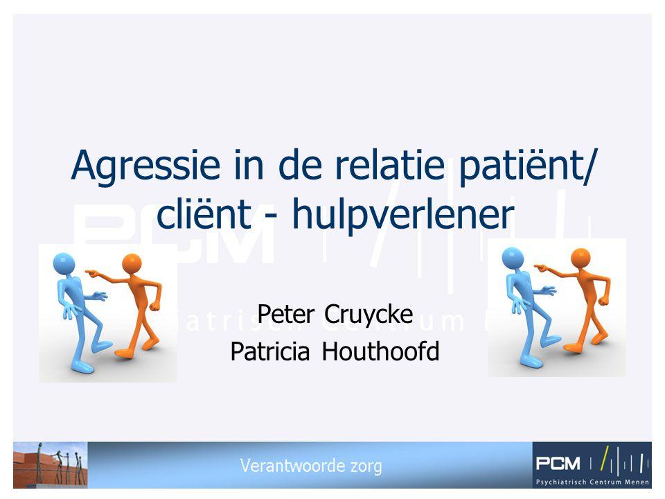 Agressie in de relatie patiënt/ cliënt - hulpverlener Peter Cruycke Patricia Houthoofd