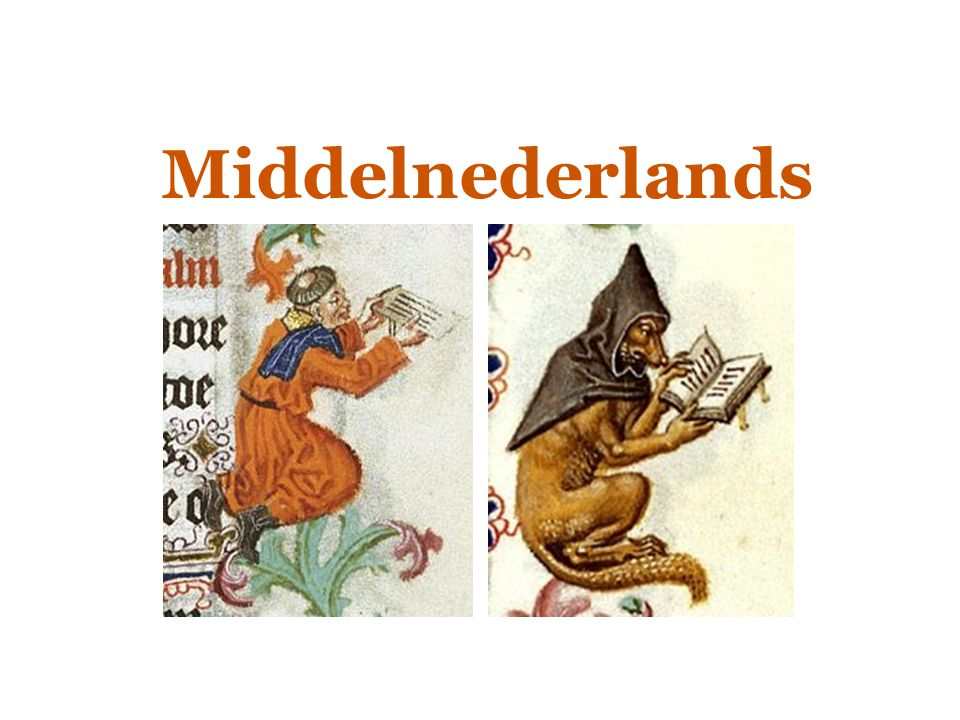 Geschiedenis van het Nederlands  Middelnederlands EEN LAPPENDEKEN VAN DIALECTEN  Bijv.:  Prestige- bereik  Het Vlaams: lange tijd toonaangevend (in schrijftaal)