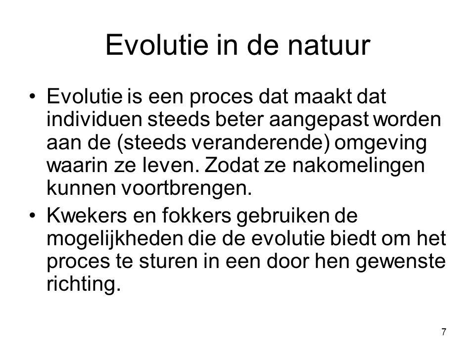 7 Evolutie in de natuur •Evolutie is een proces dat maakt dat individuen steeds beter aangepast worden aan de (steeds veranderende) omgeving waarin ze leven.