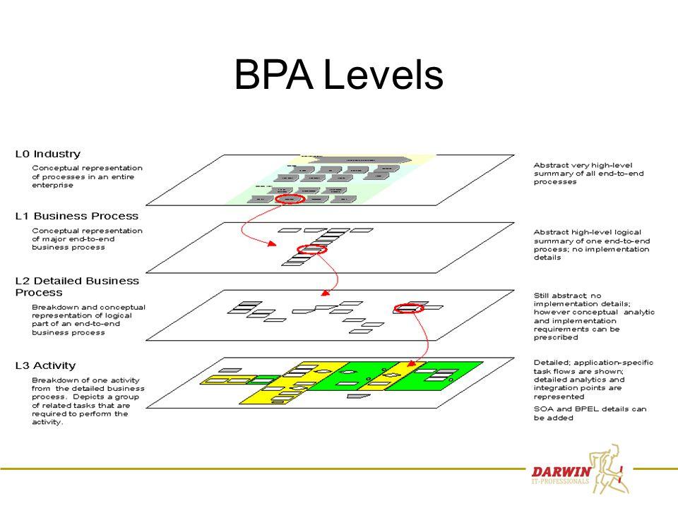 19 BPA Levels