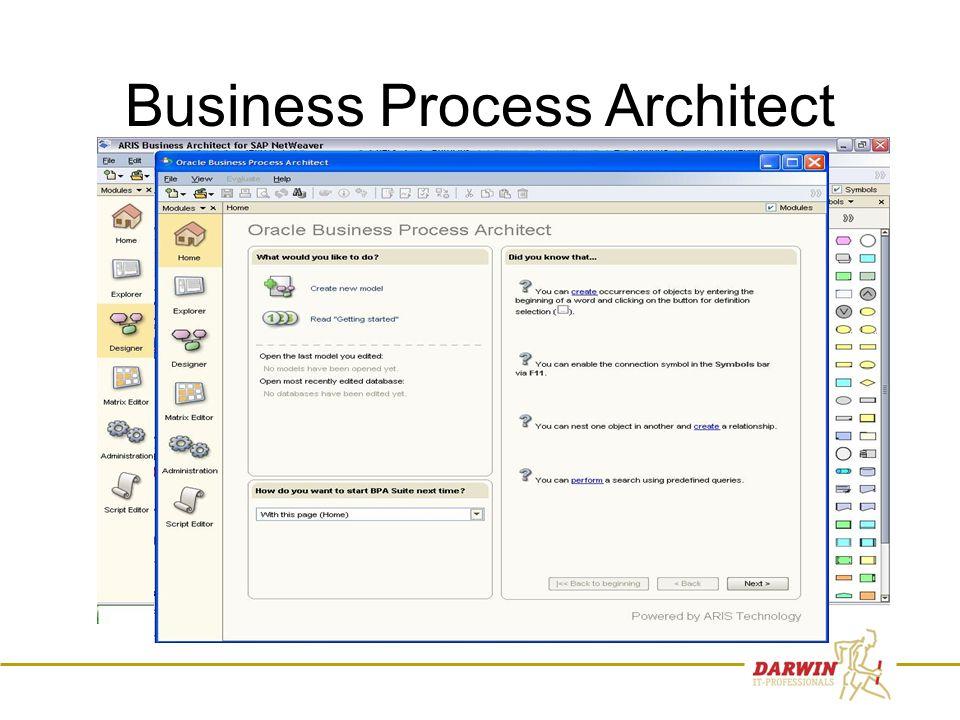 20 Business Process Architect