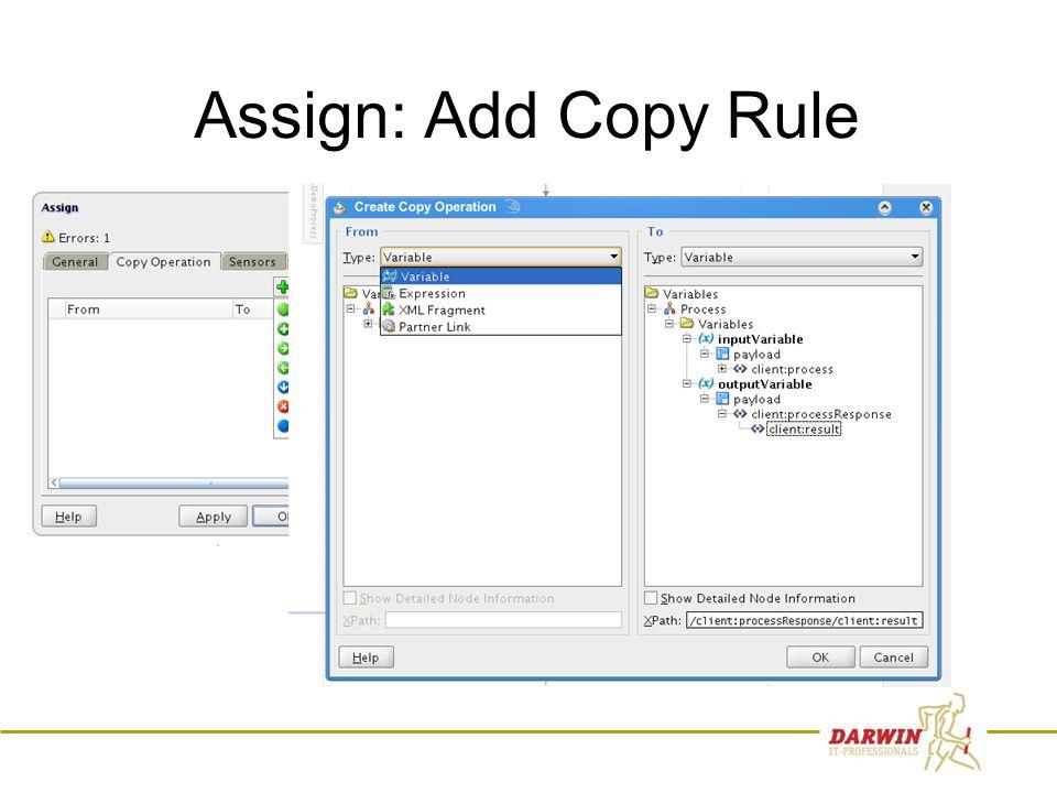 43 Assign: Add Copy Rule