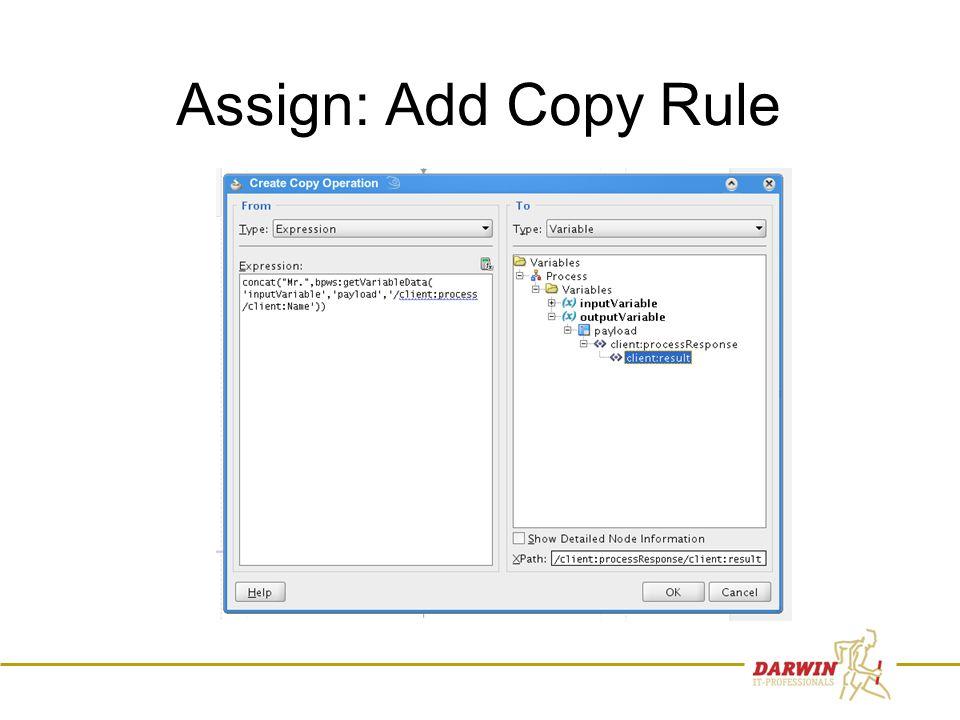 45 Assign: Add Copy Rule