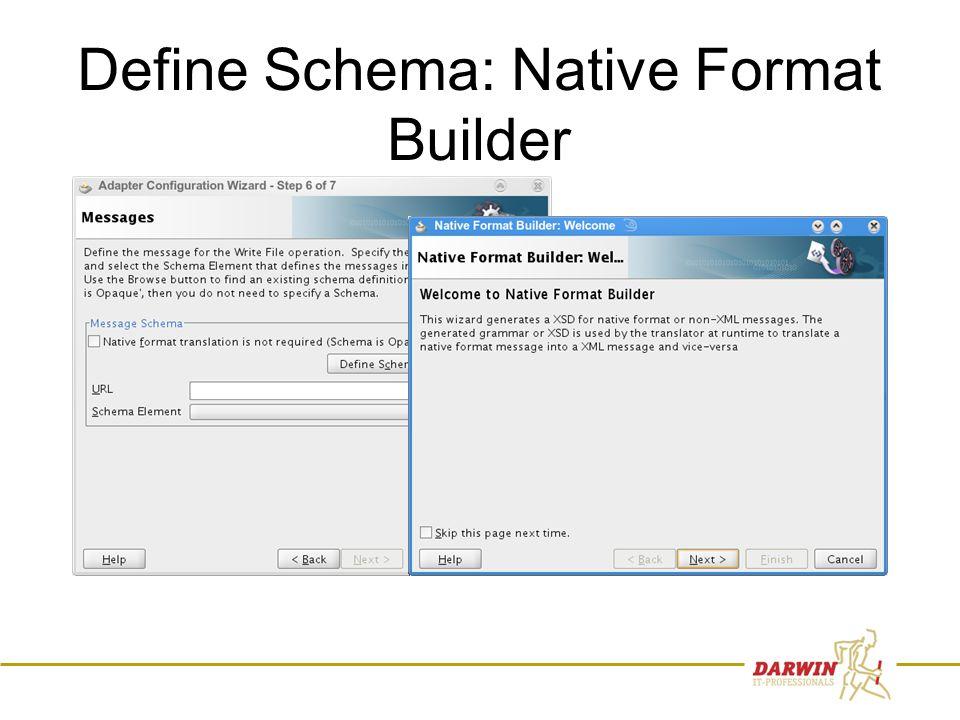 57 Define Schema: Native Format Builder