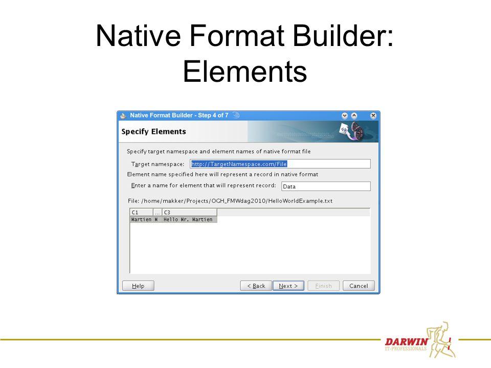 61 Native Format Builder: Elements