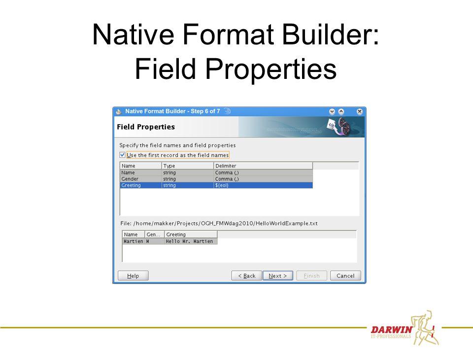 63 Native Format Builder: Field Properties