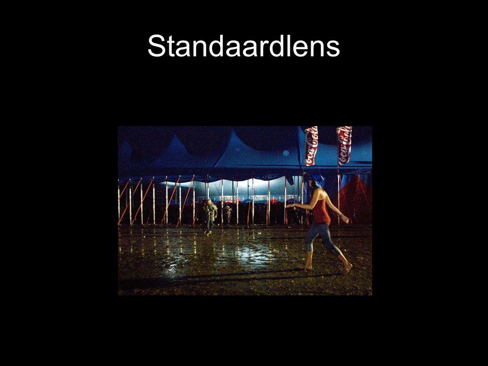 Standaardlens