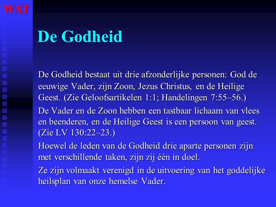 De Godheid De Godheid bestaat uit drie afzonderlijke personen: God de eeuwige Vader, zijn Zoon, Jezus Christus, en de Heilige Geest. (Zie Geloofsartik