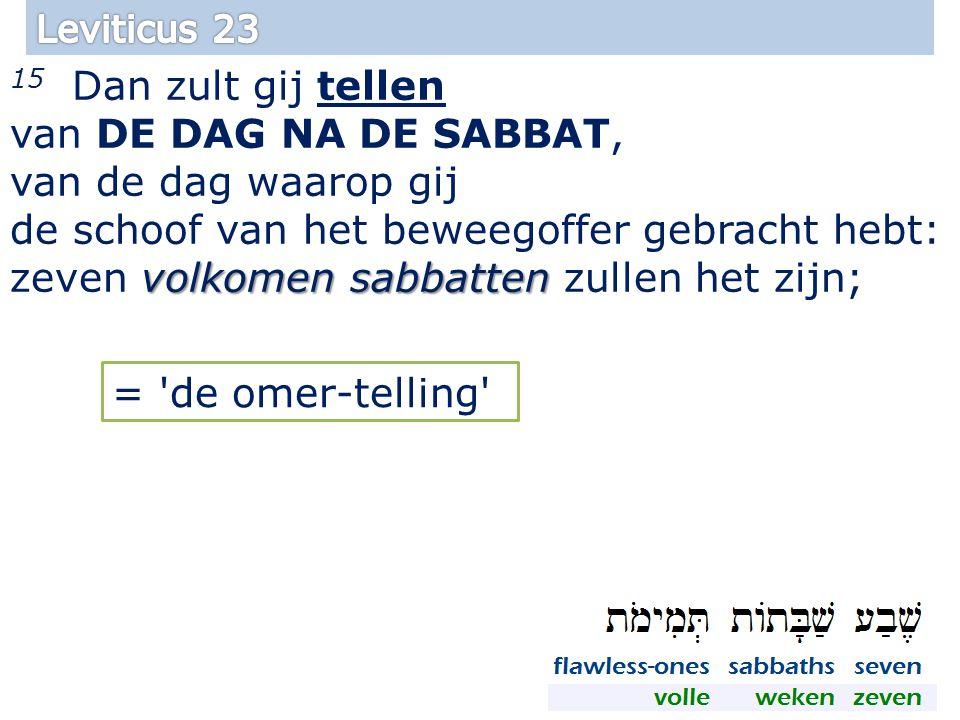 volkomen sabbatten 15 Dan zult gij tellen van DE DAG NA DE SABBAT, van de dag waarop gij de schoof van het beweegoffer gebracht hebt: zeven volkomen sabbatten zullen het zijn; 12 = de omer-telling