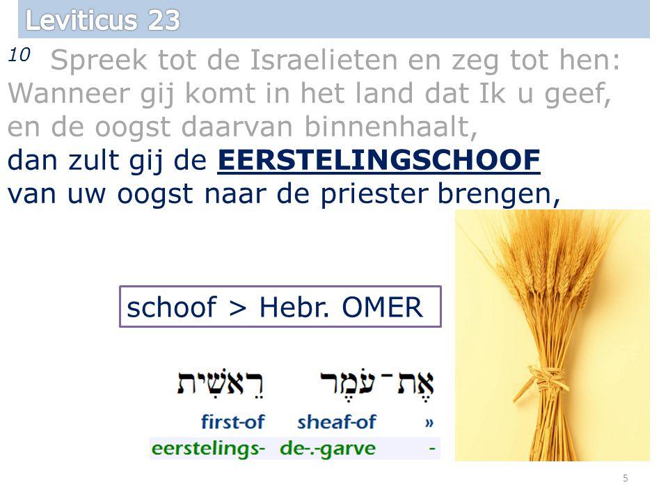 10 Spreek tot de Israelieten en zeg tot hen: Wanneer gij komt in het land dat Ik u geef, en de oogst daarvan binnenhaalt, dan zult gij de EERSTELINGSCHOOF van uw oogst naar de priester brengen, 5 schoof > Hebr.