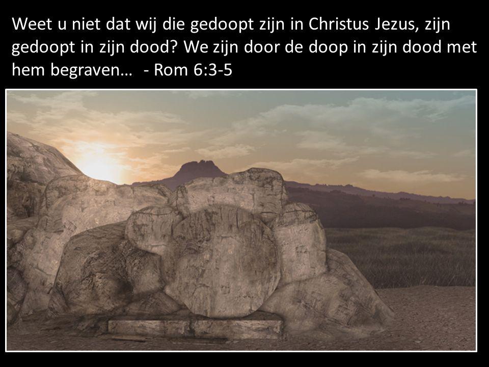 Weet u niet dat wij die gedoopt zijn in Christus Jezus, zijn gedoopt in zijn dood? We zijn door de doop in zijn dood met hem begraven… - Rom 6:3-5