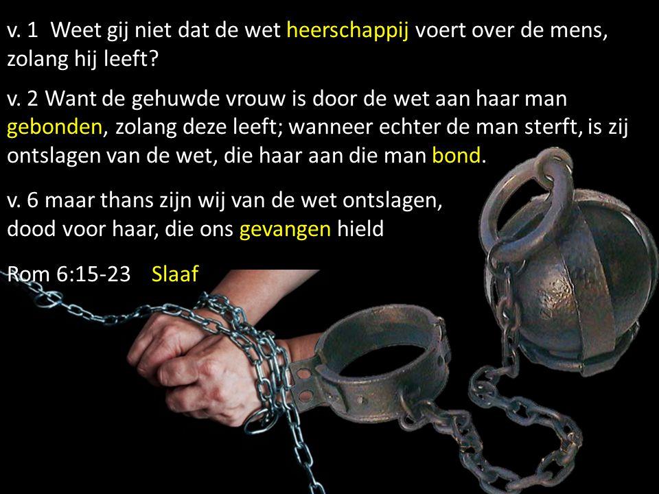 v.1 Weet gij niet dat de wet heerschappij voert over de mens, zolang hij leeft.