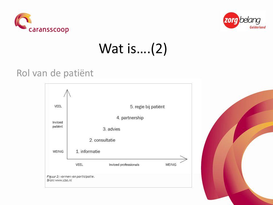 Rol van de patiënt Figuur 2; vormen van participatie. Bron: www.cbo.nl Wat is….(2)