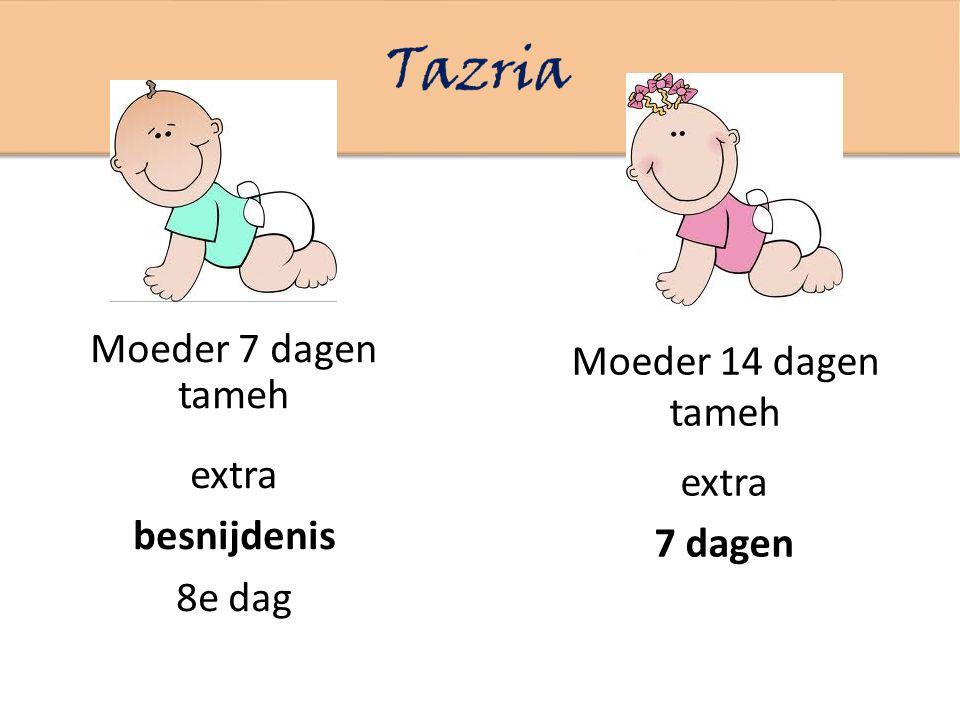 Moeder 7 dagen tameh Moeder 14 dagen tameh extra 7 dagen extra besnijdenis 8e dag