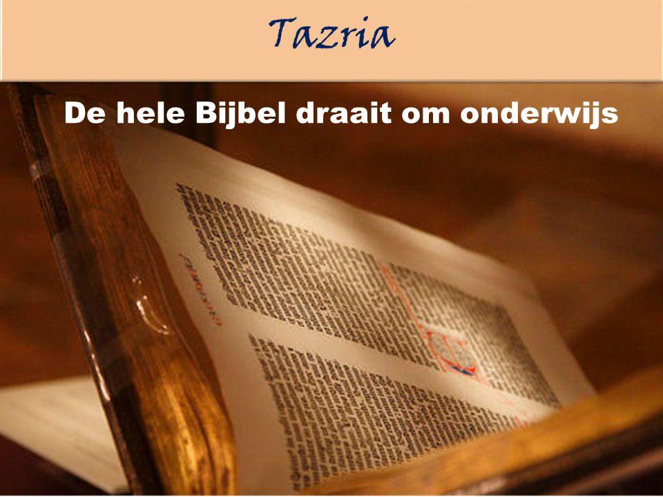 De hele Bijbel draait om onderwijs
