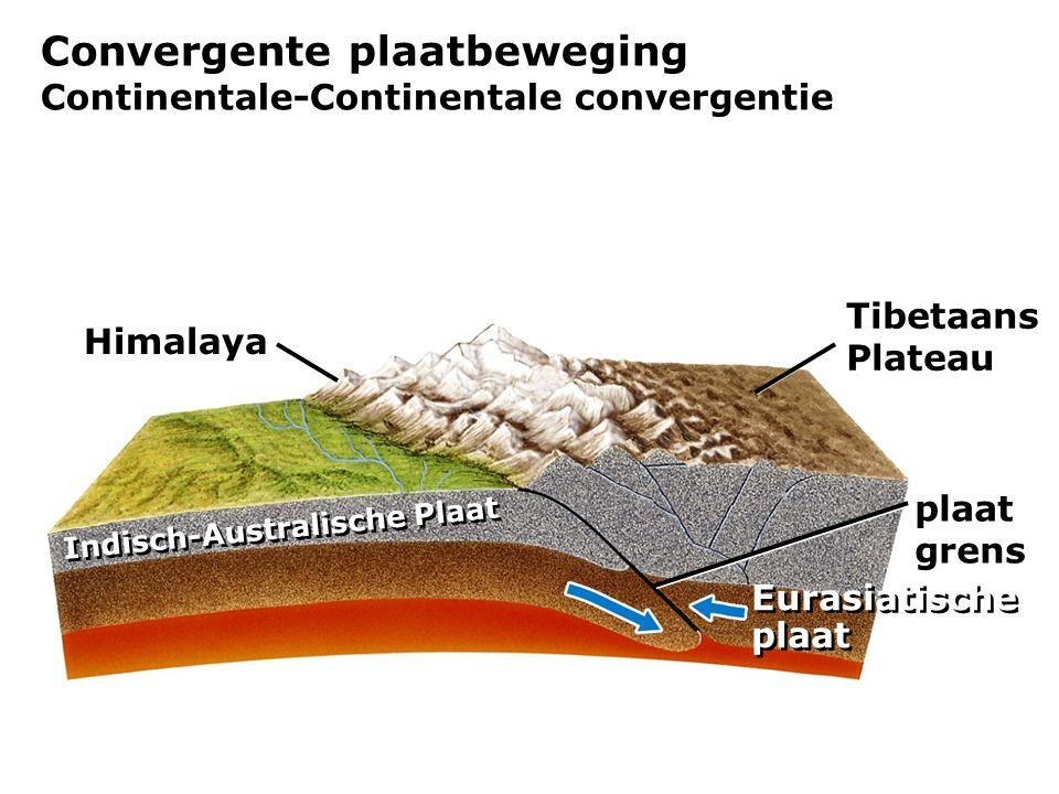 Convergente plaatbeweging Continentale-Continentale convergentie Himalaya plaat grens Tibetaans Plateau Indisch-Australische Plaat Eurasiatische plaat