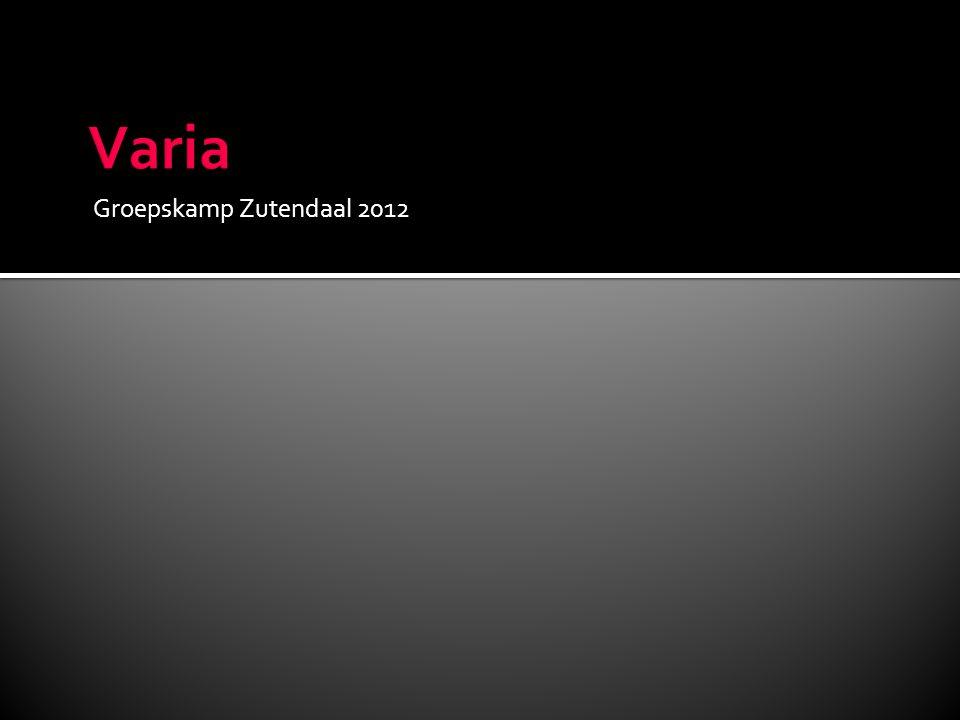 Groepskamp Zutendaal 2012