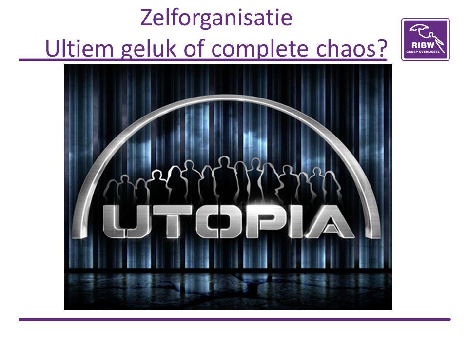 Zelforganisatie Ultiem geluk of complete chaos?