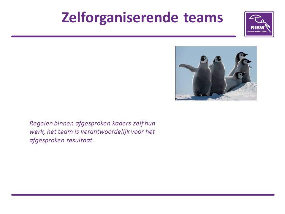 Zelforganiserende teams Regelen binnen afgesproken kaders zelf hun werk, het team is verantwoordelijk voor het afgesproken resultaat.