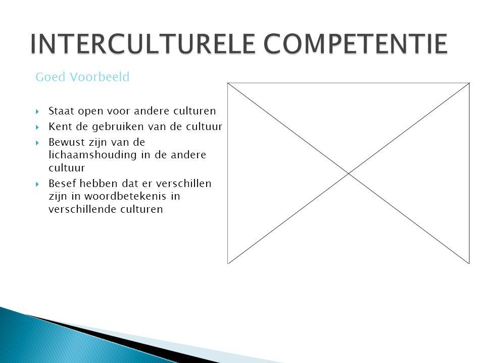  Staat open voor andere culturen  Kent de gebruiken van de cultuur  Bewust zijn van de lichaamshouding in de andere cultuur  Besef hebben dat er v