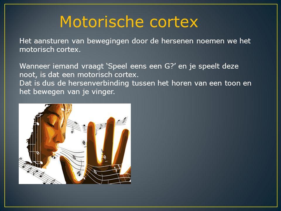 Motorische cortex Het aansturen van bewegingen door de hersenen noemen we het motorisch cortex. Wanneer iemand vraagt 'Speel eens een G?' en je speelt