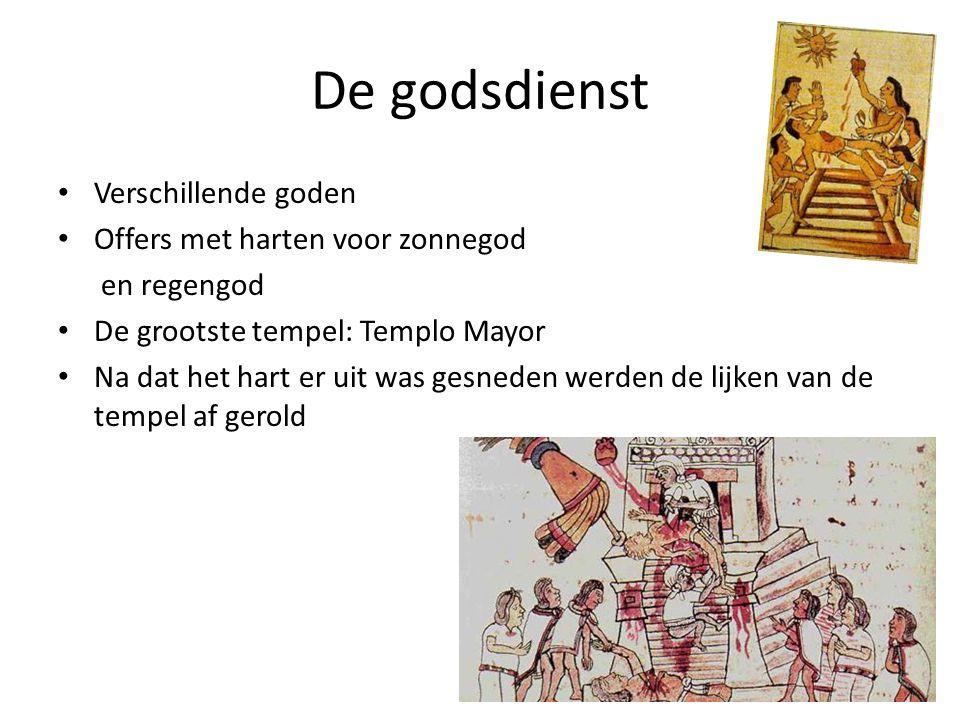 De godsdienst • Verschillende goden • Offers met harten voor zonnegod en regengod • De grootste tempel: Templo Mayor • Na dat het hart er uit was gesn