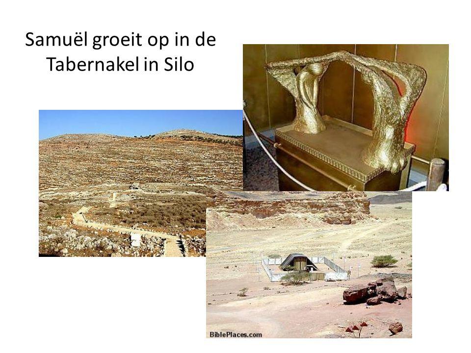 Samuël groeit op in de Tabernakel in Silo