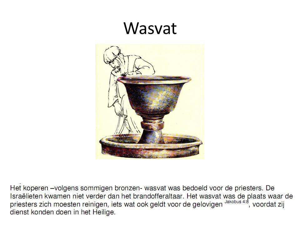 Wasvat