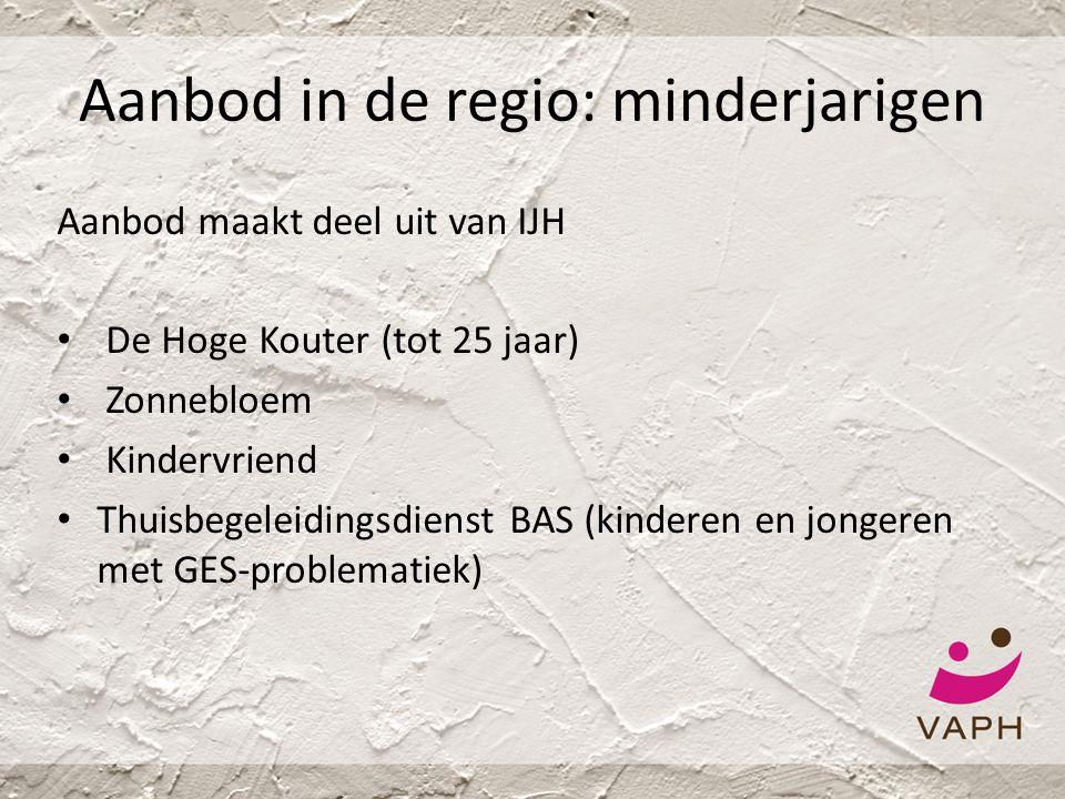 Aanbod in de regio: minderjarigen Aanbod maakt deel uit van IJH • De Hoge Kouter (tot 25 jaar) • Zonnebloem • Kindervriend • Thuisbegeleidingsdienst B