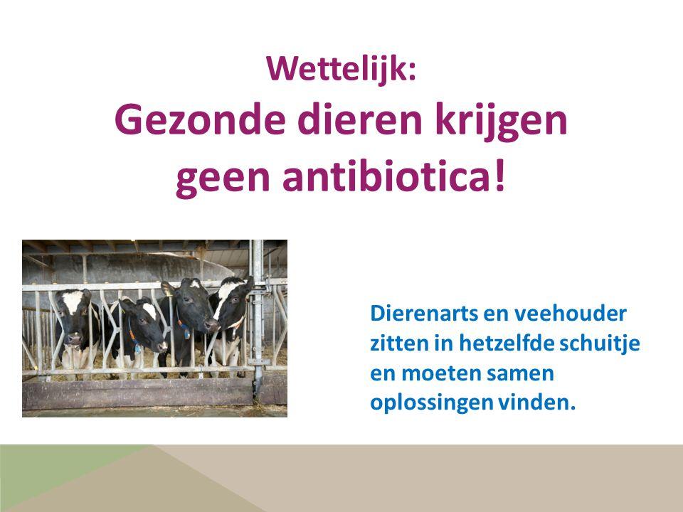 Dierenarts en veehouder zitten in hetzelfde schuitje en moeten samen oplossingen vinden. Wettelijk: Gezonde dieren krijgen geen antibiotica!