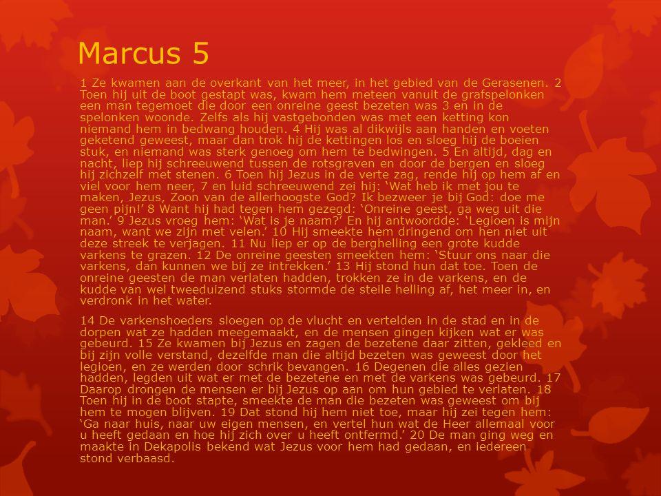 Marcus 5 1 Ze kwamen aan de overkant van het meer, in het gebied van de Gerasenen.