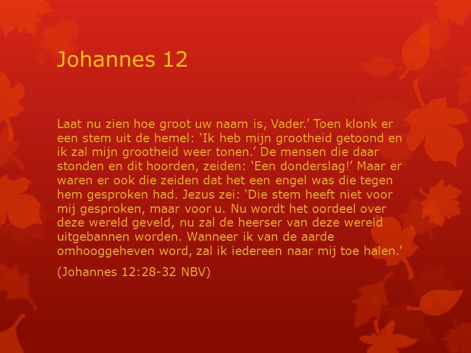 Johannes 12 Laat nu zien hoe groot uw naam is, Vader.' Toen klonk er een stem uit de hemel: 'Ik heb mijn grootheid getoond en ik zal mijn grootheid weer tonen.' De mensen die daar stonden en dit hoorden, zeiden: 'Een donderslag!' Maar er waren er ook die zeiden dat het een engel was die tegen hem gesproken had.