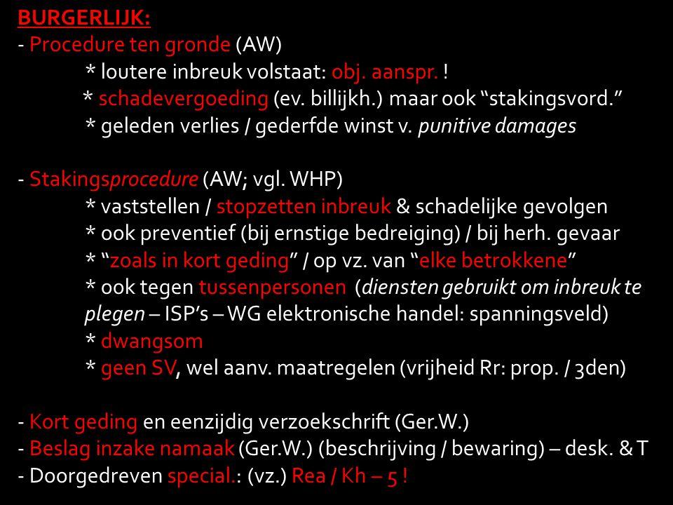 """BURGERLIJK: - Procedure ten gronde (AW) * loutere inbreuk volstaat: obj. aanspr. ! * schadevergoeding (ev. billijkh.) maar ook """"stakingsvord."""" * geled"""