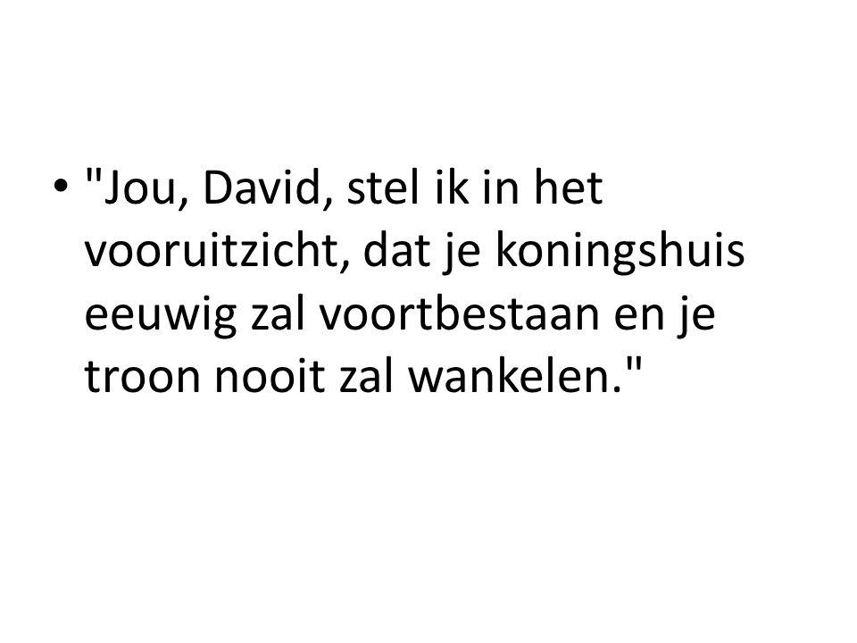 De HEER vergeet zijn belofte aan David niet.• 1.